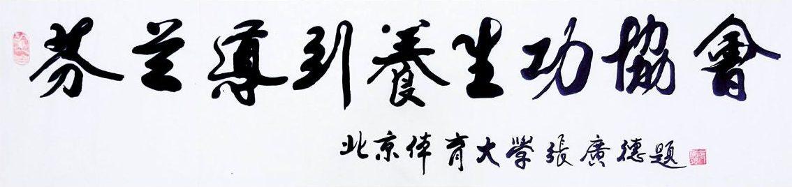 Suomen Dao Yin Yang Sheng Gong-liitto